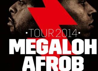 afrob megaloh tour 2014